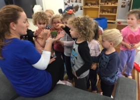 Bluegum Preschool 2 ½ Years to 3 ½ Years