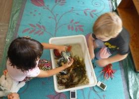 Nulkaba Preschool 3 ½ Years to School Age